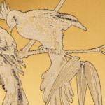 Vogelmuster